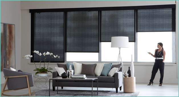 drapery and blinds cleaning services carpet cleaner new york - Drapes And Blinds